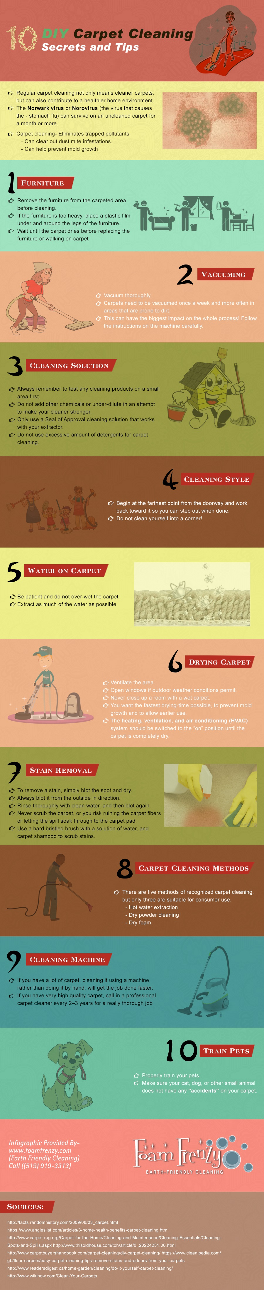 Diy Carpet Cleaning Infographic Confessions Of The