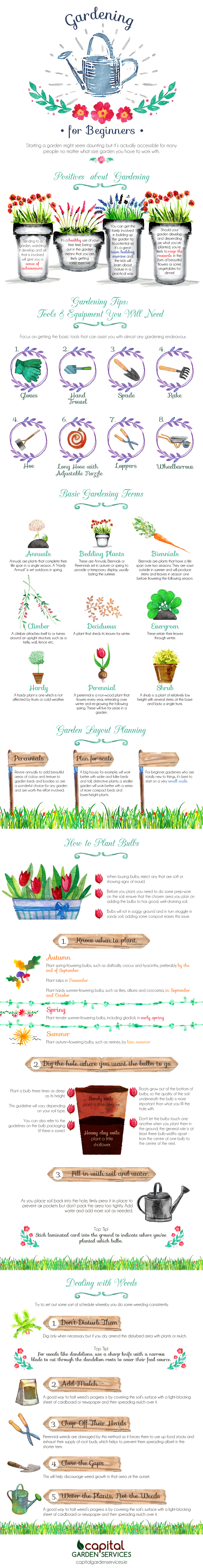 Gardening for Beginners [Infographic]