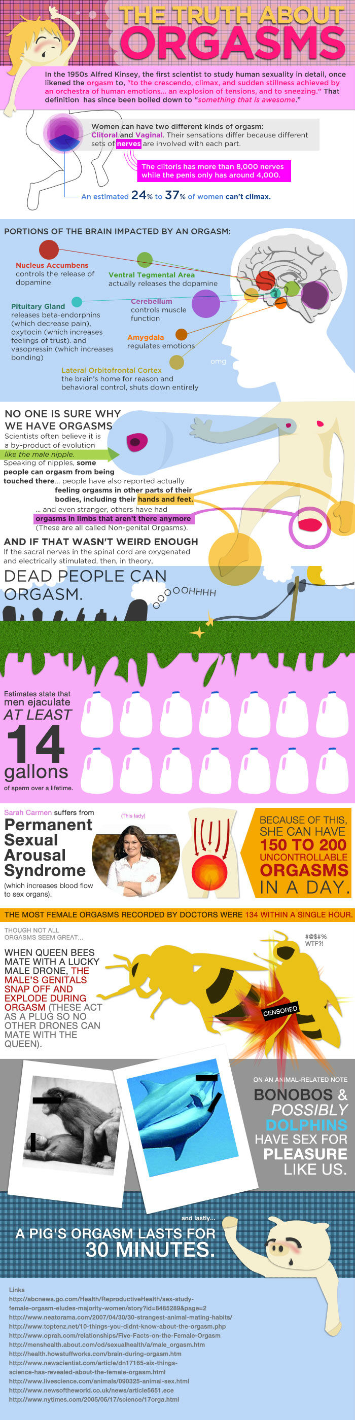 The Truth About Orgasms [Infographic]