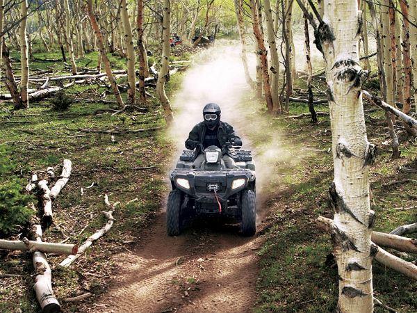 ATV Woods