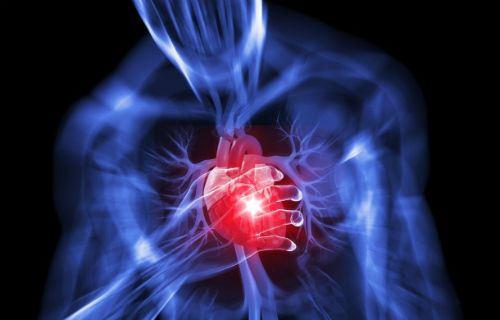Heart Disease 101: Cardiovascular Disease