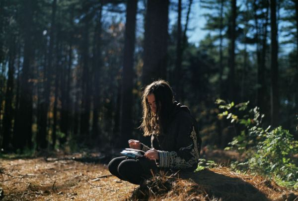 Creative Writing In Forest