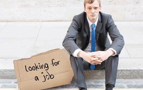 Fired Guy Looking For Job