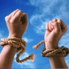 Freedom Ropes