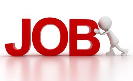 A Job Seekers Essential Tools