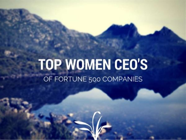 Women CEOs Of Fortune 500 Companies