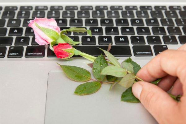 Rose on Macbook